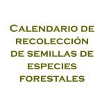 Calendario de recolleción de semillas forestales