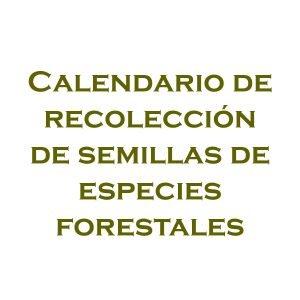 Calendario de recolleción de semillas forestales